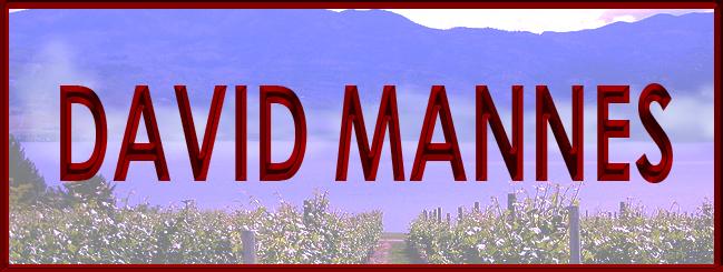 Banner DAVID MANNES