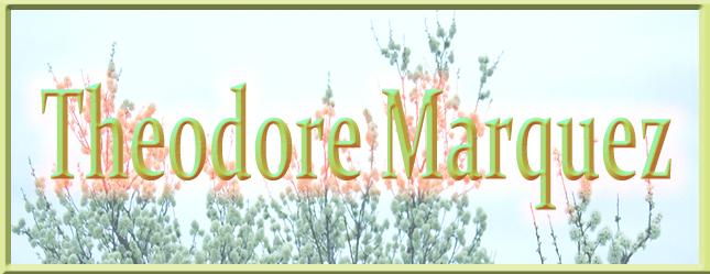 Banner Theodore Marquez