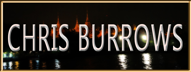 Banner  CHRIS BURROWS