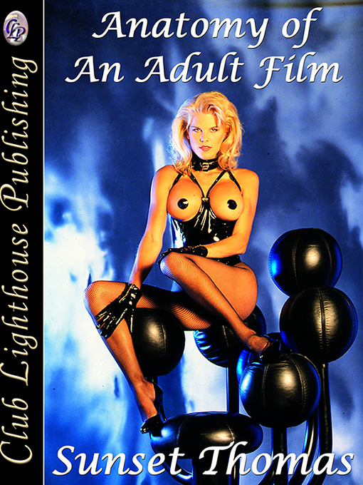 Cover for Anatomy Of An Adult Film